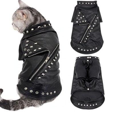cazadora de cuero motorista o Negan The Walking Dead. Los disfraces más divertidos para gatos y dónde comprarlos