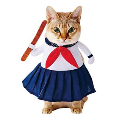 Colegiala japonesa. Los disfraces más divertidos para gatos y dónde comprarlos