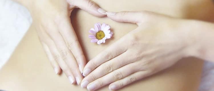 Virgo flor y corazón en manos Horóscopo para Febrero de 2021: todos los signos